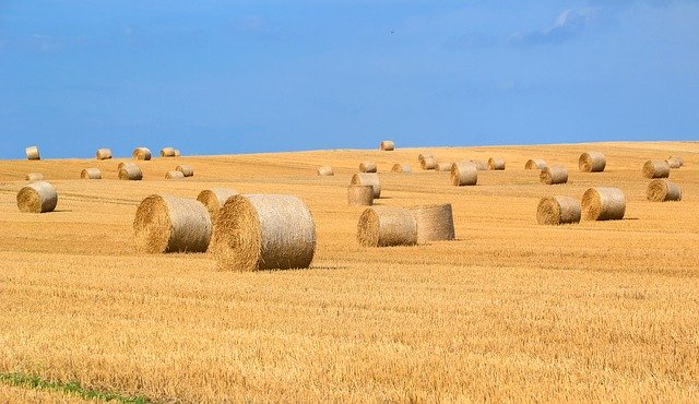 Nährstoffe Ackerbau