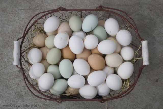 wechseljahre symptome eier 1