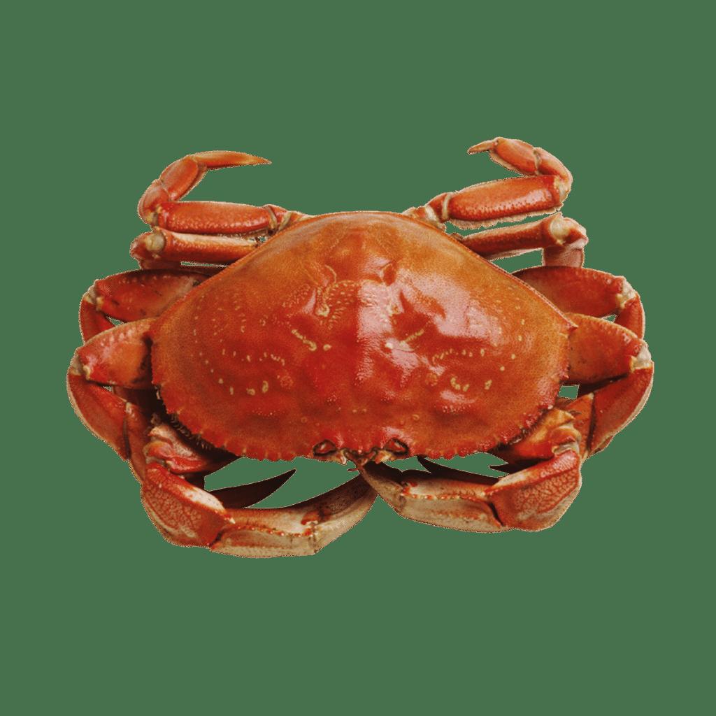 wechseljahre symptome krabben