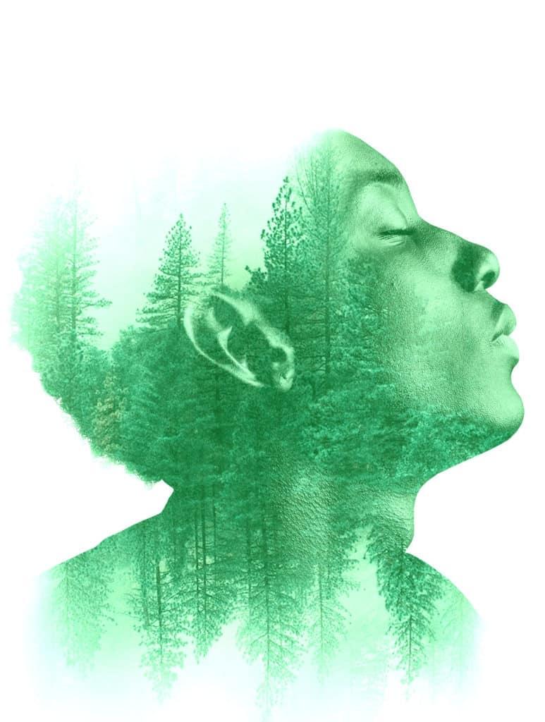 Die Biophilie-Hypothese besagt, dass wir ein angeborenes Bedürfnis haben, mit der Natur in Verbindung zu treten.